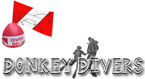 Donkey Divers