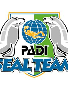 Seal Team Logo