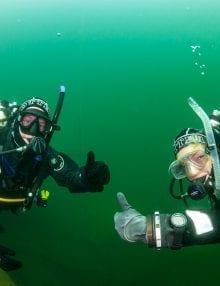 Donkey Divers Club