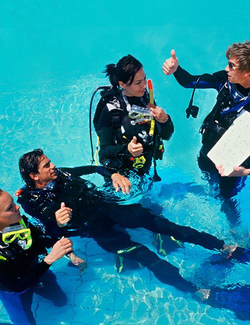 PADI - Donkey Divers Club