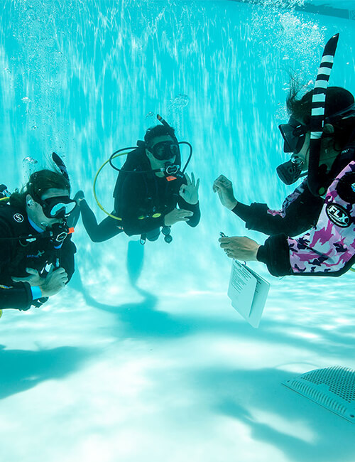 PADI Open Water Dive Training Courses